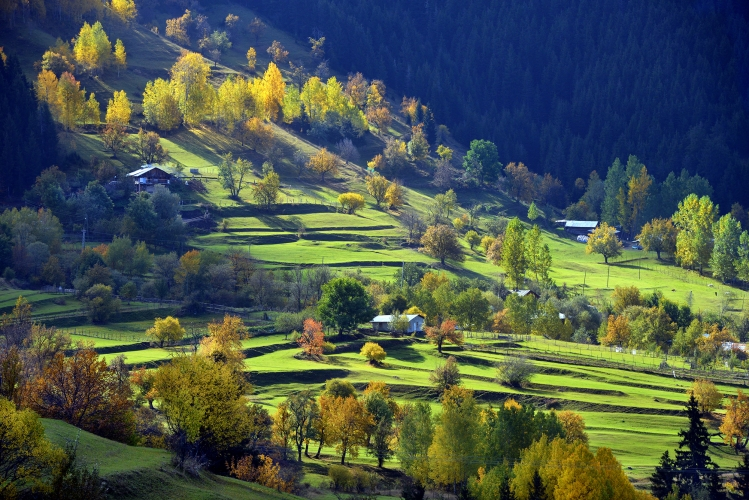 Artvin: A Symphony Of Colours
